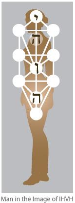 ihvh-body