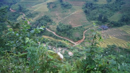 Looking down into the Sapa Valley