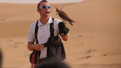 A blindfolded Falcon
