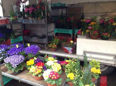 A flower market in Vienne