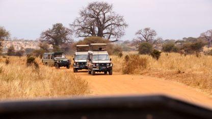 Safari style driving