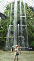 Waterfall in Cloud Forest - 35 meters high