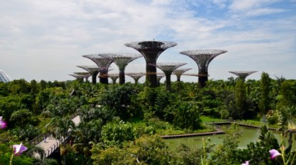 The 'trees' of Gardens by the Bay