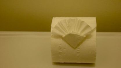 Who spruces up their toilet paper like this for your guests.