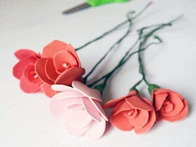 وردات بالفوم