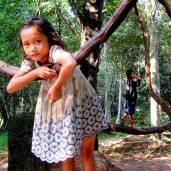 Vine swings: Cambodia
