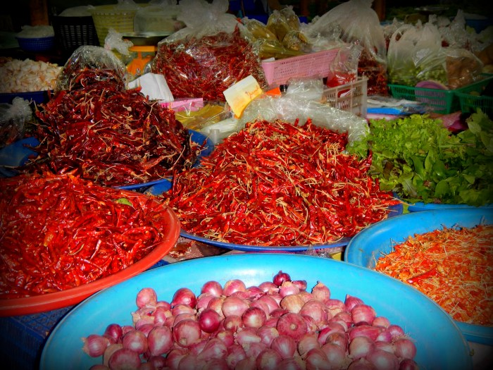 Day market in Chiang Mai for our cooking class, Thailand
