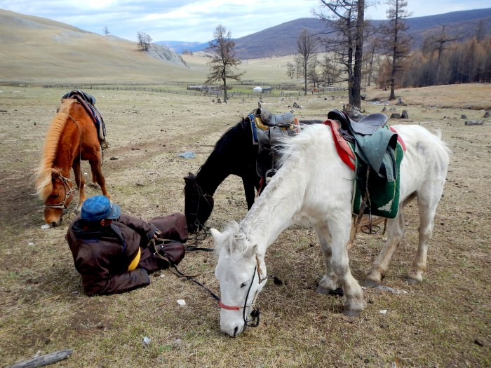 Our trekking guide, resting with the horses. Northern Mongolia.