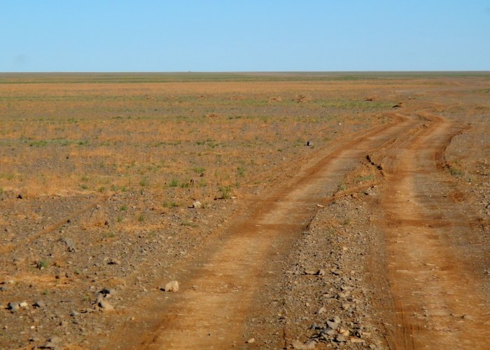 A typical road through the Gobi near Dalanzadgad.