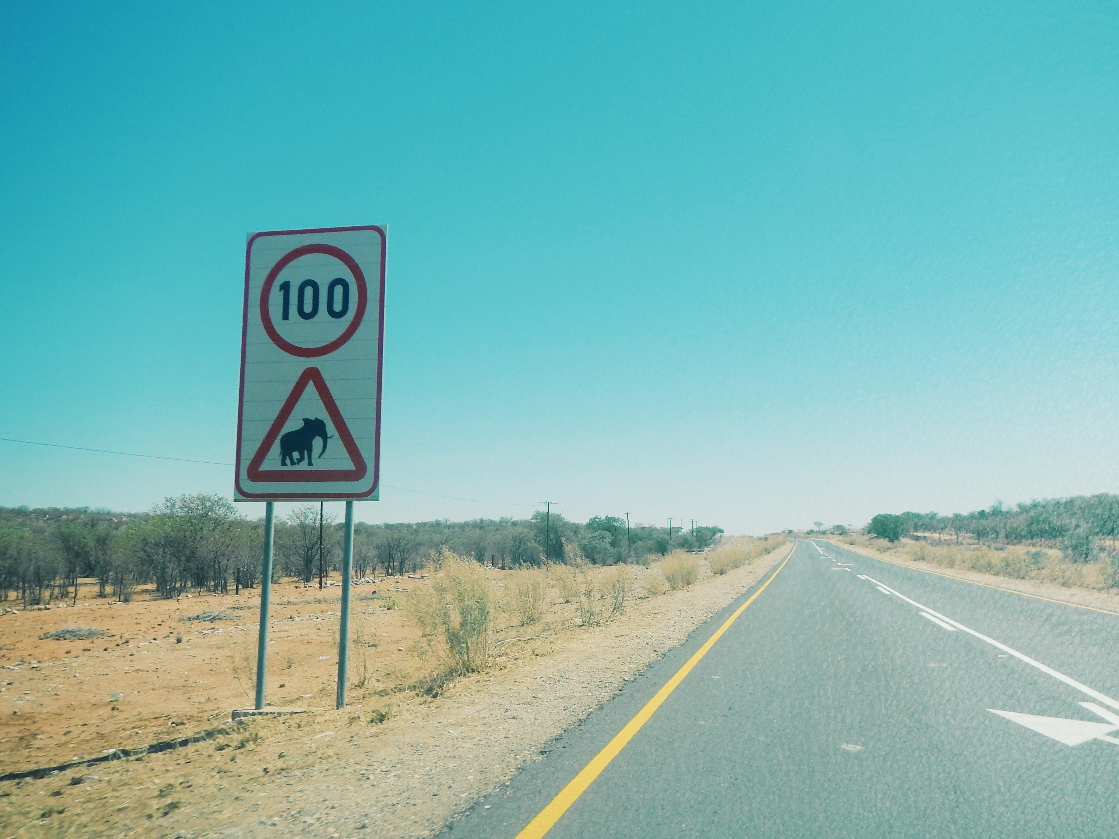 Namibia-- first Elephant Crossing we'd ever seen