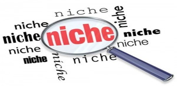 How To Make Money Online, - Create Niche Websites