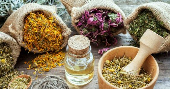 7 Steps To Balance Hormones Naturally - Adaptogen Herbs