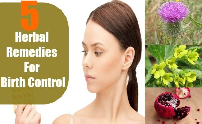 TOP 5 Herbal Remedies For Natural Birth Control