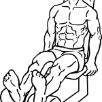 Seated-leg-curl-2