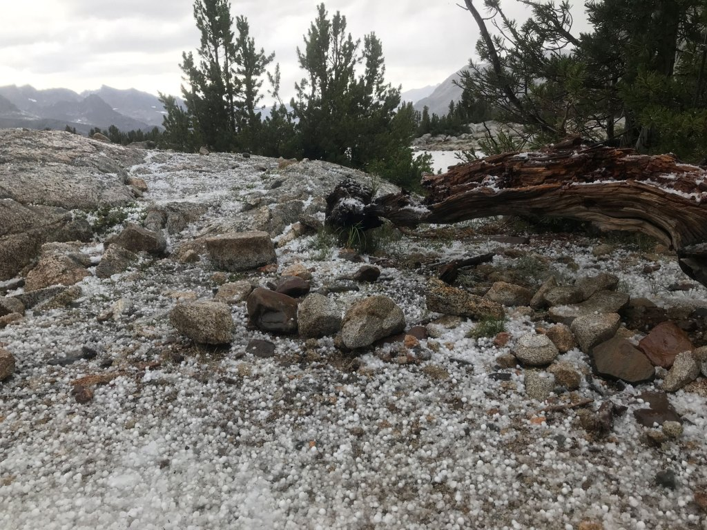 Hail littered the landscape, covering the area with a blanket of small icy globules