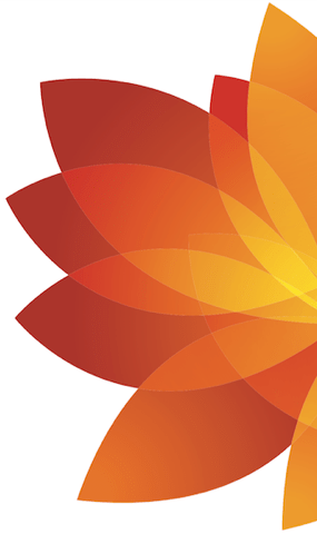 CME flower cropped.png
