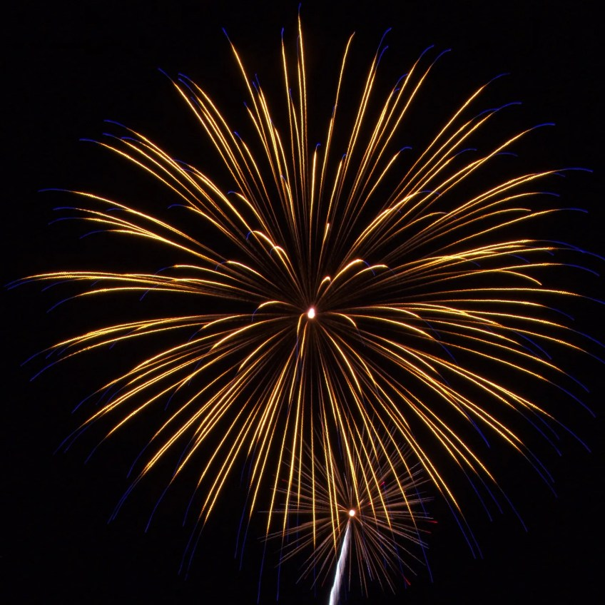 Cape Cod Fireworks: Yellow with blue tips