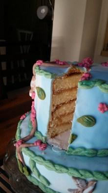 Spring Cake - Side Vision
