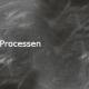 Opleiding Processen