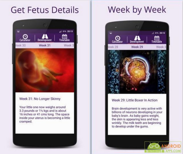 First Time Pregnancy App