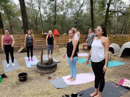 Goat Yoga Feb 2019 (117)