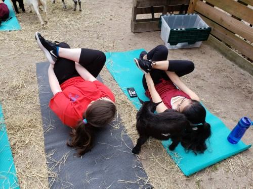 Goat Yoga Feb 2019 (91)