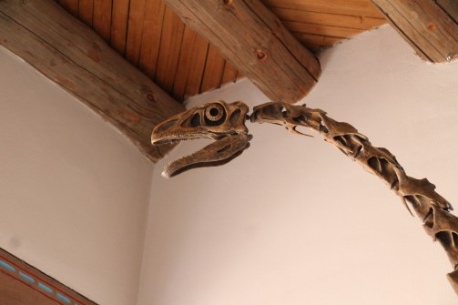A therizinosaur (Nothronychus) in the front lobby