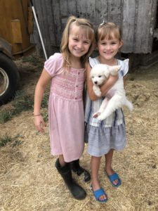 liesl and elliana goat milk formula sisters