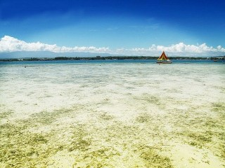 Siargao Island: Not Your Typical Surfer's Paradise