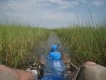 Photo Essay: Mokoro Rides in the Okavango Delta