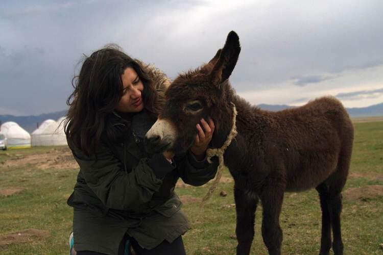 Making friends with a baby donkey at Song Kol Lake.