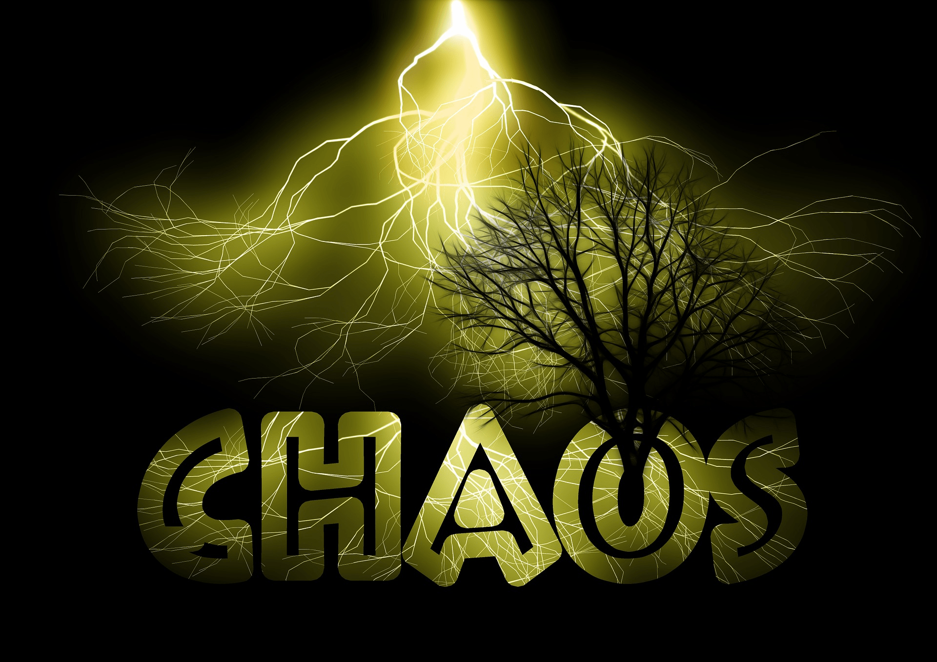 Growth out of Chaos by Geralt CC0 Public Domain Pixabay