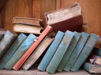 Dusty Books by DevilsApricot CC0 Public Domain from Pixabay