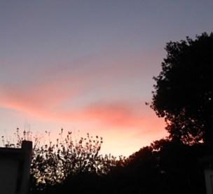 orange sunset joy