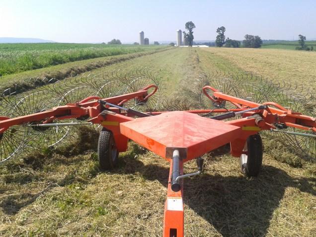 Raking hay with the Kuhn SpeedRake.