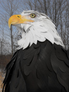 bald eagle sculpture