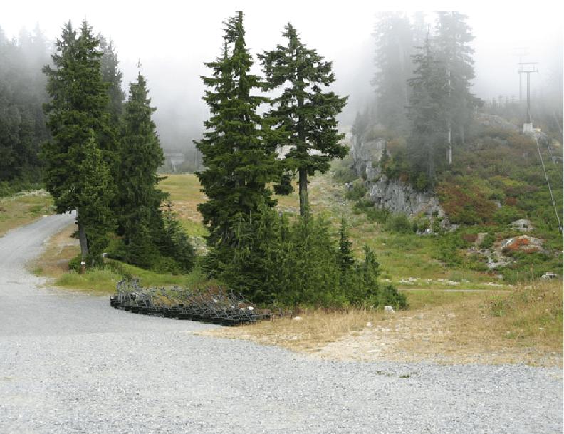 Into the heart of garibaldi. Mount Seymour Go Camping Bc