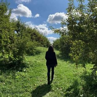 Walking through Hicks Orchard