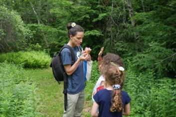 Kinderhook Creek Preserve