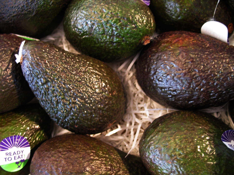 Avocado3660
