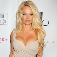 Now Single Pamela Anderson Now has Appetite for Dating a Lot of Guys