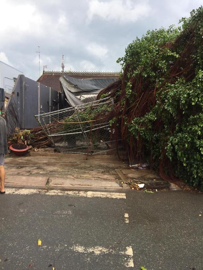 tinngan 090126 920737733 1 Mưa giông dữ dội làm tốc mái hơn 100 căn nhà, xe cộ nằm la liệt giữa đường