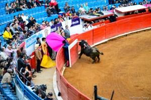 2012Mexico City121230-019-11-2