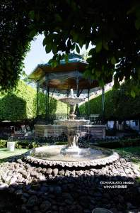 Fountain in the center of the Jardin de la Union