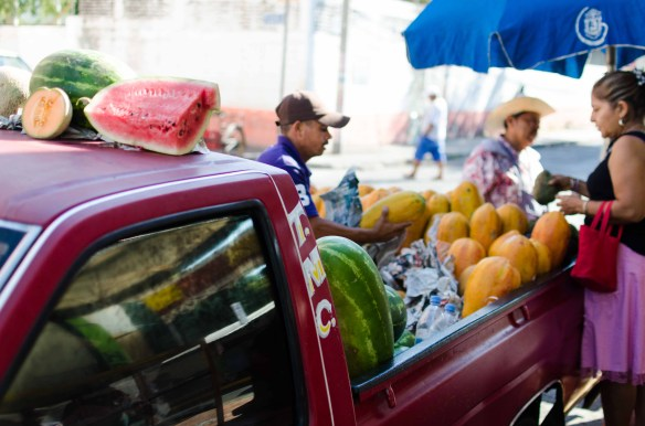 Fresh papayas and watermelons, direct from the source