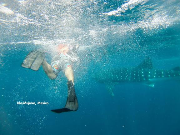 Yours Truly Swimming with Whale Sharks!