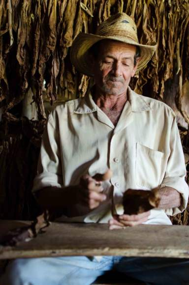 Rolling Cigars in the Drying Shed