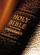 Bible Spine