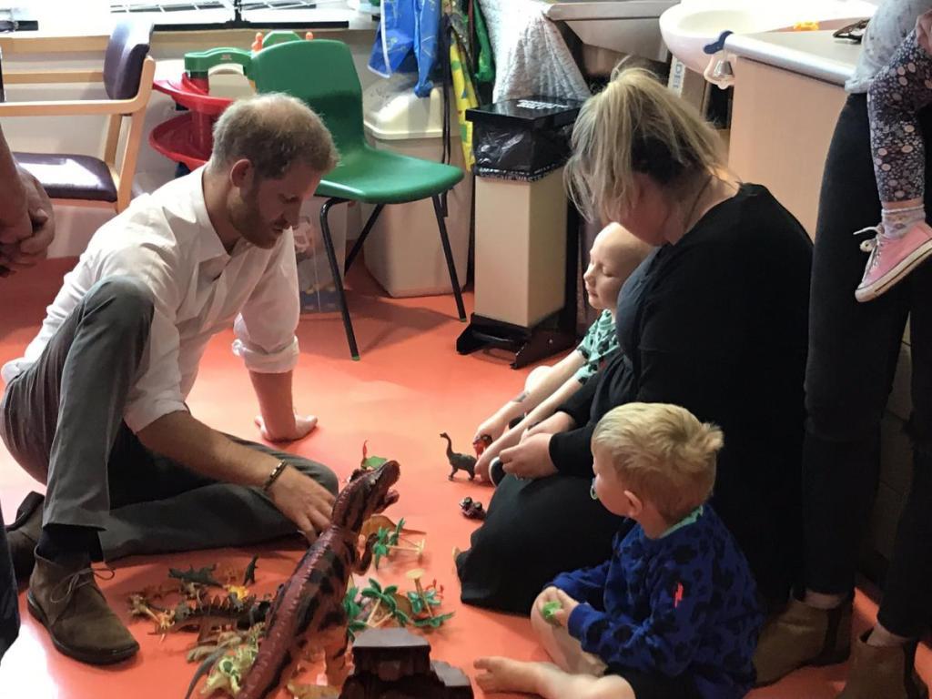 #donate4bilbo, bilbosjourney, childhoodcancer, godberstravel, leukaemia, leukemia, prince harry, Prince Harry Oxford, Prince Harry Playing with Dinosaurs, scamp and dude