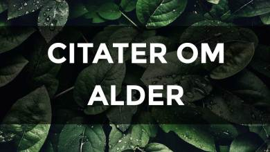 Photo of Citater om Alder